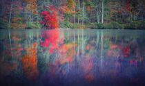 Autumn Reflection von William Schmid