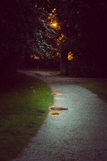 Romantic park way in the evening von Ingo Menhard
