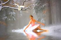 Winter Dancer von sharon lisa clarke