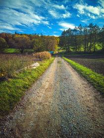 Walking the autumn countryroad von Ingo Menhard