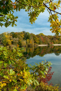 Autumn day at the lake by Iryna Mathes