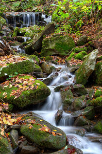 Running Water On Hillside by Phil Perkins