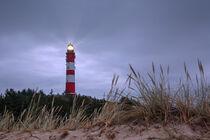 Leuchtturm von Amrum, Nordfriesland, Deutschland von alfotokunst