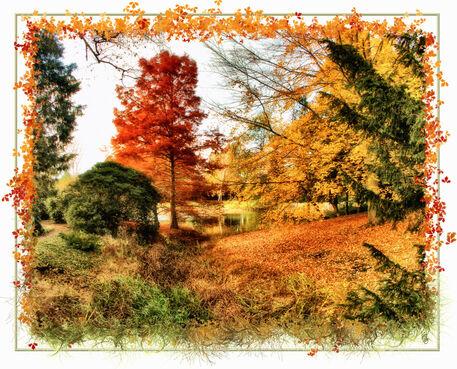 Herbstidylle-2