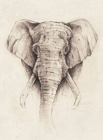 Elephant by Mike Koubou