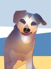 Ein Blick aus treuen Hundeaugen, Pelle lächelt, Promenadenmischung von Andrea Osterhage
