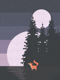 Two Moon Night by imagonarium