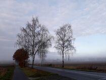 Wenn der Tag aus dem Nebel erwacht II by Anja  Bagunk