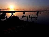 Modern Fishing2 von Ridzard  König