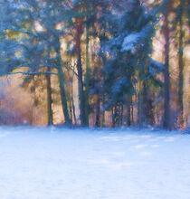 Winter by Bärbel Stangenberg