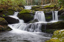 Cascades On Lynn Camp Prong by Phil Perkins