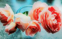 Englische Rosen von Heike Jäschke