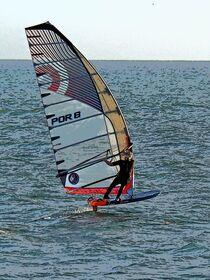Windsurfer von vogtart
