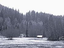 Waldhütte im Winter von vogtart