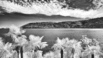 Isola Madre (Lago Maggiore) von Stefan Zimmermann