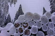 Schneeherz von mario-s