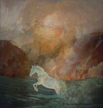 Der Schimmel und das Meer by Marie Luise Strohmenger
