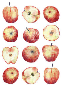 Apples by Nic Squirrell