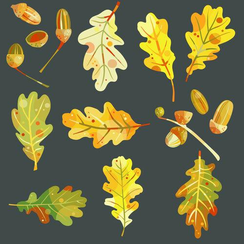 Oak-leaves-and-acorns-dark-8000
