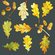 Acorns and Oak Leaves in the Dark by Nic Squirrell
