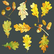 Acorns and Oak Leaves in the Dark von Nic Squirrell