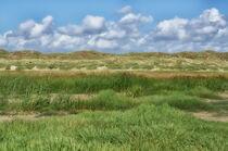 Dünenlandschaft in Dänemark by Iris Heuer