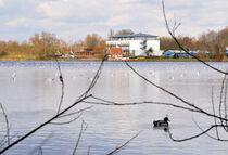 Still ruht der See by Heinz Munk