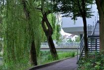Natur und Architektur  by Heinz Munk