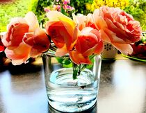 Englische Rosen - Sommer am Fenster