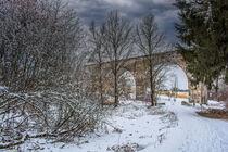 DE - Baden-Württemberg : Viadukt Laupheim by Michael Naegele