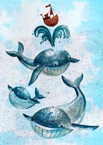 Wale by Sarah Benko