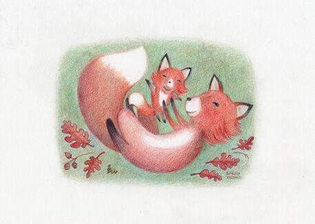 Foxs-sarah-benko