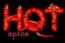 hot spice by Barbara Pfannstiel