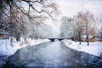 Peaceful Winter von Randi Grace Nilsberg