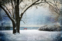 Stories From a Bench by Randi Grace Nilsberg