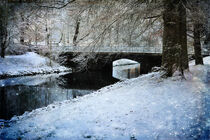Winter by the Canal von Randi Grace Nilsberg