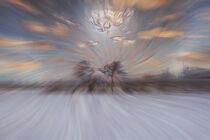 Abstract : Snow and clouds by Michael Naegele