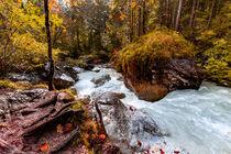 Herbst im Zauberwald von Dirk Rüter