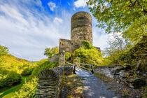 Burg Stahlberg 29 - 2 von Erhard Hess