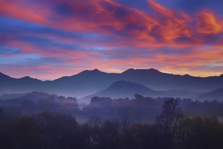 Peachtree-sunrise-50-end