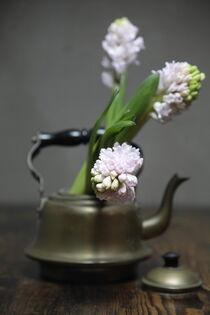 Still mit Kessel und Blumen  by Petra Dreiling-Schewe