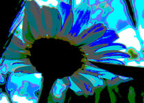 Daydreaming Daisy von mimulux