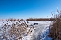 Bodden bei Ahrenshoop auf dem Fischland-Darß im Winter von Rico Ködder