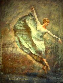 Der Sprung von Marie Luise Strohmenger