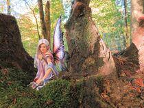 Kleine Waldfee von Marita Zacharias