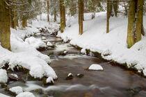 Bach im Winter by Dirk Rüter
