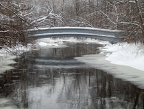 Bridge Over Icy Waters by Phil Perkins
