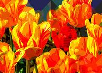 A Splash of Tulips von mimulux
