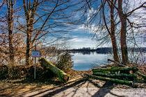 DE - Baden-Württemberg : Ansicht auf den Natursee by Michael Naegele