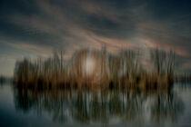 Abstract : Lake island von Michael Naegele